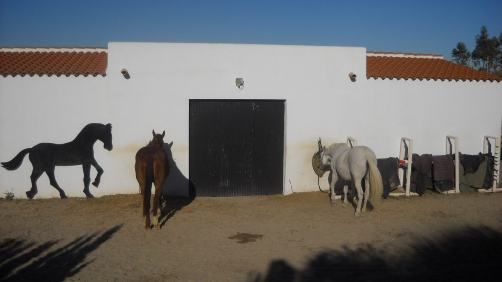 Huge 4 Bedroom Detached Villa with Stables and Pool Near Mojacar, Almeria, Spain, €625,000